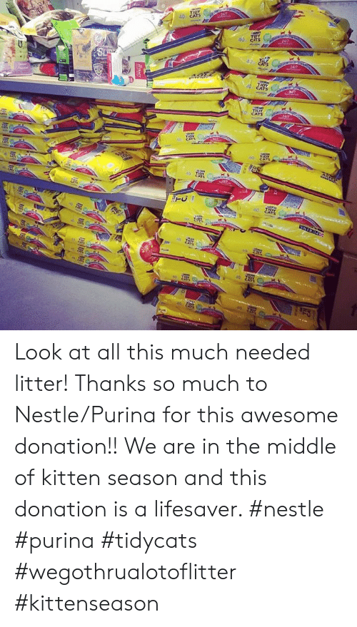 Cars, Cats, and Memes: TIDY  40 CATS  247  TIPY  24/7  SL  24/7  TIDY  CATS  TIUY  CATS  www  TIDY  A CArs  es  40 TiOY  CATS  IIDY  CATS  40  40 TIDY  CATS  40  40 TNY  TTRACE  93 Look at all this much needed litter!  Thanks so much to Nestle/Purina for this awesome donation!!  We are in the middle of kitten season and this donation is a lifesaver. #nestle #purina #tidycats #wegothrualotoflitter #kittenseason