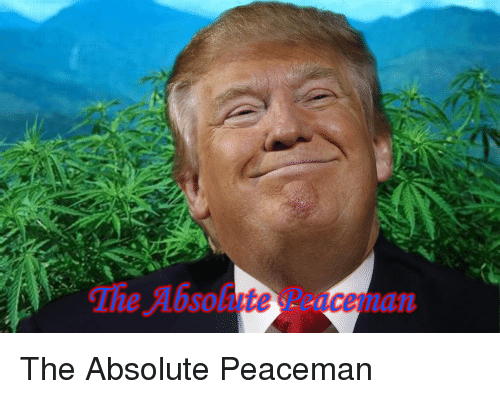 Tie, The, and Absolute: Tie Absolute  sceman