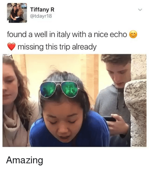 Memes, Tiffany, and Amazing: Tiffany R  @tdayr18  found a well in italy with a nice echo  missing this trip already Amazing