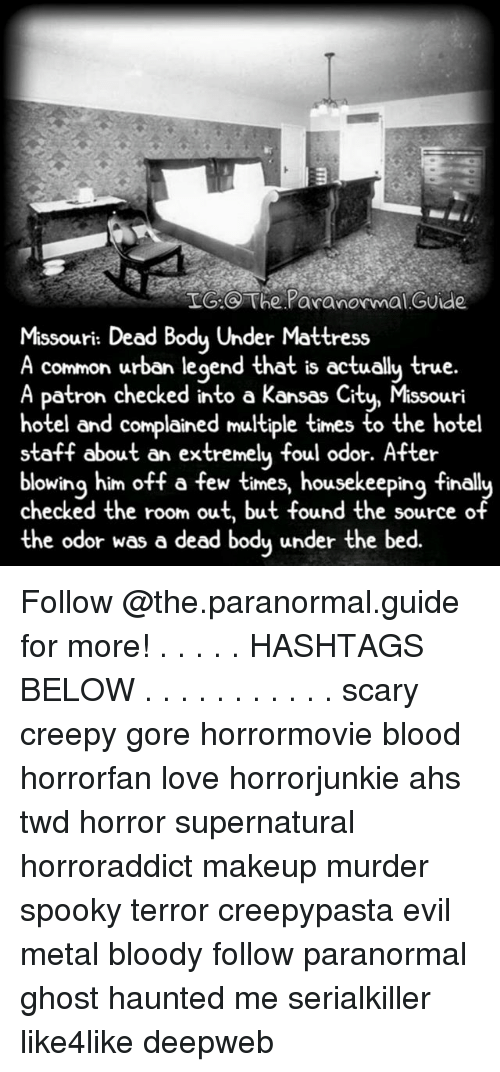 Creepy, Love, and Makeup: TIG The Paranormal Guide  Missouri: Dead Body Under Mattress  A common urban legend that is actually true.  A Patron checked into a Kansas Ci  Missouri  hotel and complained multiple times to the hotel  staff about an extremely foul odor. After  blowing him off a few times, housekeeping finall  checked the room out, but found the source of  the odor was a dead body under the bed. Follow @the.paranormal.guide for more! . . . . . HASHTAGS BELOW . . . . . . . . . . . scary creepy gore horrormovie blood horrorfan love horrorjunkie ahs twd horror supernatural horroraddict makeup murder spooky terror creepypasta evil metal bloody follow paranormal ghost haunted me serialkiller like4like deepweb