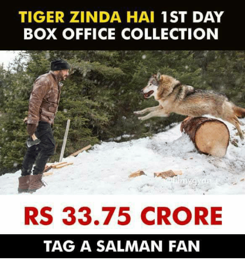 Memes, Box Office, and Office: TIGER ZINDA HAI 1ST DAY  BOX OFFICE COLLECTION  RS 33.75 CRORE  TAG A SALMAN FAN
