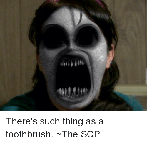Til Mette There's Such Thing as a Toothbrush ~The SCP