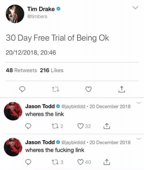 Drake, Fucking, and Memes: Tim Drake  @timbers  30 Day Free Trial of Being Ok  20/12/2018, 20:46  48 Retweets 216 Likes  Jason Todd @jaybirddd. 20 December 2018  wheres the link  Jason Todd @jaybirddd. 20 December 2018  wheres the fucking link