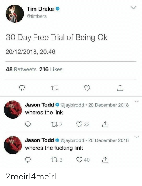Drake, Fucking, and Free: Tim Drake  @timbers  30 Day Free Trial of Being Ok  20/12/2018, 20:46  48 Retweets 216 Likes  Jason Todd @jaybirddd . 20 December 2018  wheres the link  Jason Todd e. @jaybirddd-20 December 2018  wheres the fucking link  40 2meirl4meirl