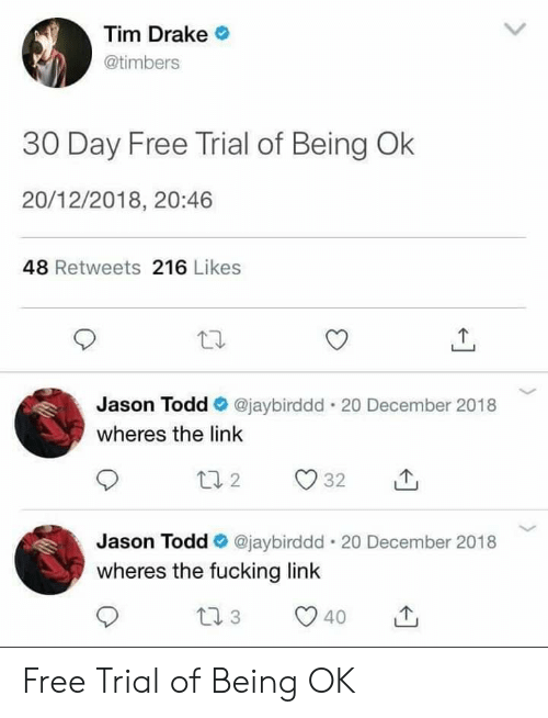 Drake, Fucking, and Free: Tim Drake  @timbers  30 Day Free Trial of Being Ok  20/12/2018, 20:46  48 Retweets 216 Likes  Jason Todd @jaybirddd . 20 December 2018  wheres the link  Jason Todd e. @jaybirddd-20 December 2018  wheres the fucking link  40 Free Trial of Being OK