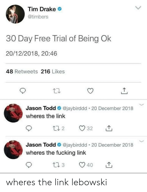 Drake, Fucking, and Free: Tim Drake  @timbers  30 Day Free Trial of Being Ok  20/12/2018, 20:46  48 Retweets 216 Likes  Jason Todd @jaybirddd . 20 December 2018  wheres the link  Jason Todd @jaybirddd-20 December 2018  wheres the fucking link  40 wheres the link lebowski