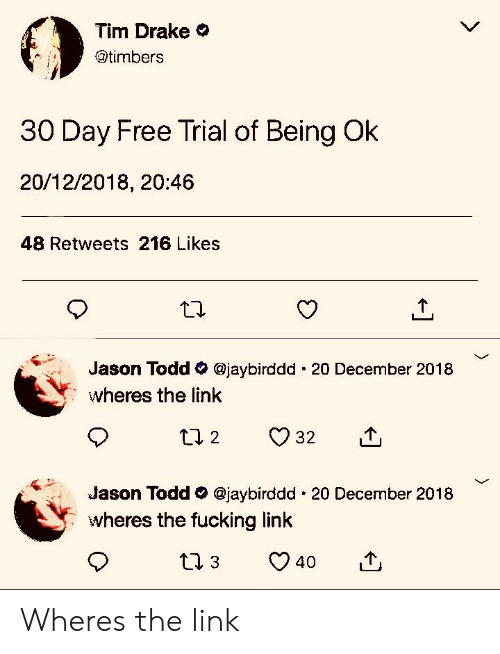 Drake, Fucking, and Free: Tim Drake  @timbers  30 Day Free Trial of Being Ok  20/12/2018, 20:46  48 Retweets 216 Likes  Jason Todd @jaybirddd 20 December 2018  wheres the link  Jason Todd @jaybirddd 20 December 2018  wheres the fucking link  40 Wheres the link
