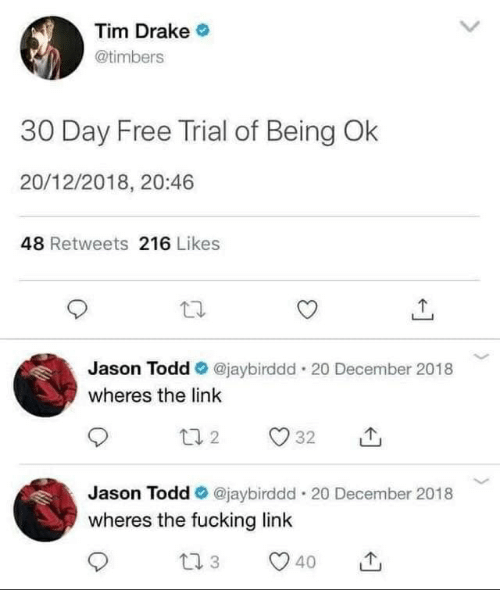 Drake, Fucking, and Free: Tim Drake  @timbers  30 Day Free Trial of Being Ok  20/12/2018, 20:46  48 Retweets 216 Likes  Jason Todd  @jaybirddd 20 December 2018  wheres the link  132  32  Jason Todd  @jaybirddd 20 December 2018  wheres the fucking link  t1 3  40