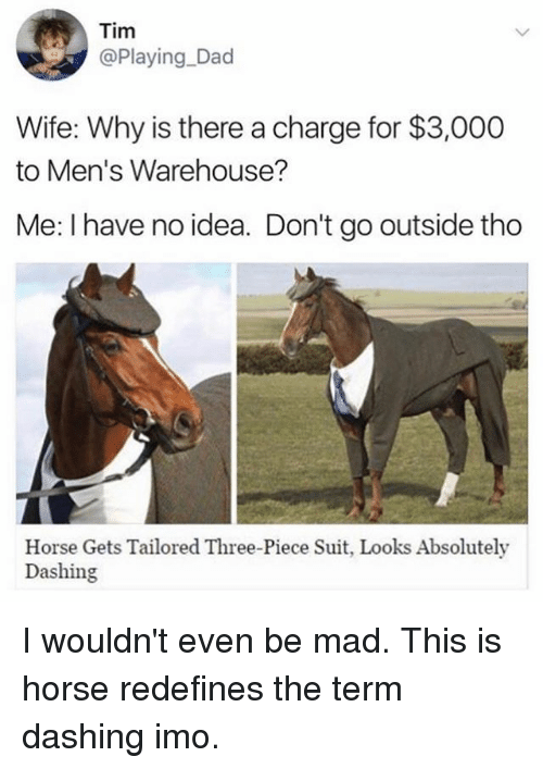 Dad, Funny, and Horse: Tim  @Playing Dad  Wife: Why is there a charge for $3,000  to Men's Warehouse?  Me: I have no idea. Don't go outside tho  Horse Gets Tailored Three-Piece Suit, Looks Absolutely  Dashing I wouldn't even be mad. This is horse redefines the term dashing imo.