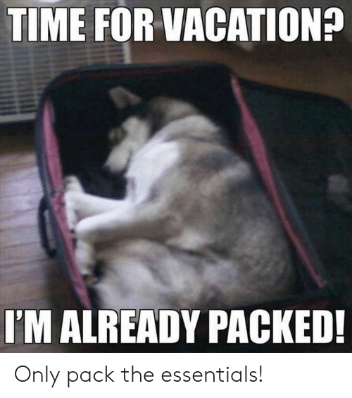 Download Meme Vacation Time Png Gif Base See, rate and share the best holidays memes, gifs and funny pics. meme vacation time png gif base