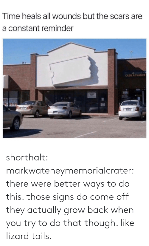 Tumblr, Blog, and Time: Time heals all wounds but the scars are  a constant reminder  SYRMT A  CASH ADVANCE  17.0 shorthalt: markwateneymemorialcrater:  there were better ways to do this. those signs do come off   they actually grow back when you try to do that though. like lizard tails.