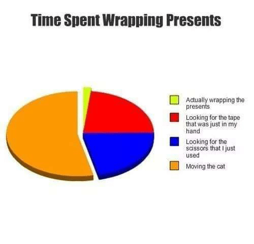 Memes, Time, and 🤖: Time Spent Wrapping Presents  Actually wrapping the  presents  Looking for the tape  that was just in my  hand  Looking for the  scissors that I just  used  Moving the cat