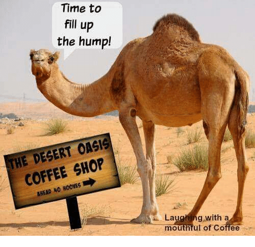Time to Fill Up the Hump! HE DEGERT OASIS COFFEE SHOP AHEAD 40 ... #coffeeTime