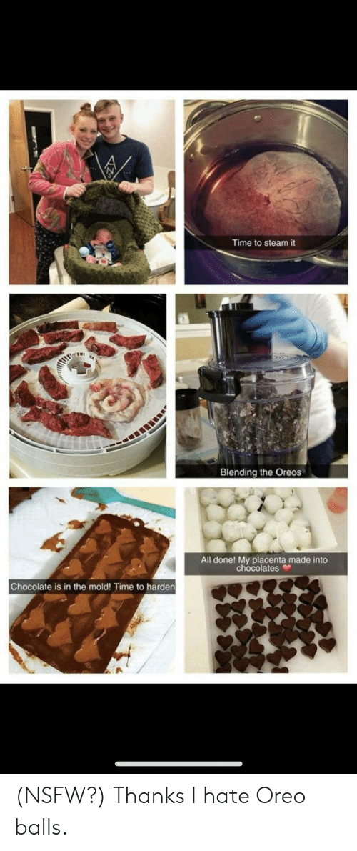 Nsfw, Steam, and Chocolate: Time to steam it  Blending the Oreos  All done! My placenta made into  chocolates  Chocolate is in the mold! Time to harden (NSFW?) Thanks I hate Oreo balls.