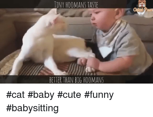 Funny Babysitting Meme : ✅ best memes about funny family funny family memes
