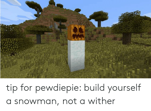 Tip for Pewdiepie Build Yourself a Snowman Not a Wither