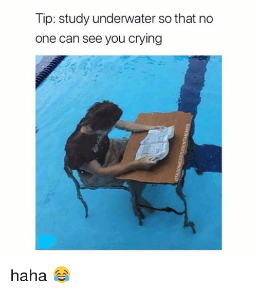 Crying, Memes, and Haha: Tip: study underwater so that no  one can see you crying haha 😂