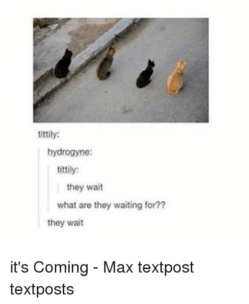 Memes, 🤖, and What Ares: tittily:  hydrogyne:  tittily:  they wait  what are they waiting for??  they wait it's Coming - Max textpost textposts