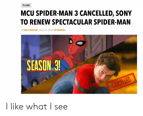 TL DR MCU SPIDER-MAN 3 CANCELLED SONY TO RENEW SPECTACULAR