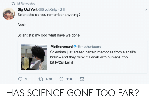 God, Work, and Brain: tl jd Retweeted  Big Uzi Vert @BlvckGrip 21h  Scientists: do you remember anything?  Snail:  Scientists: my god what have we done  Motherboard @motherboard  Scientists just erased certain memories from a snail's  brain-and they think it'll work with humans, too  bit.ly/2sFLeTd  9 HAS SCIENCE GONE TOO FAR?