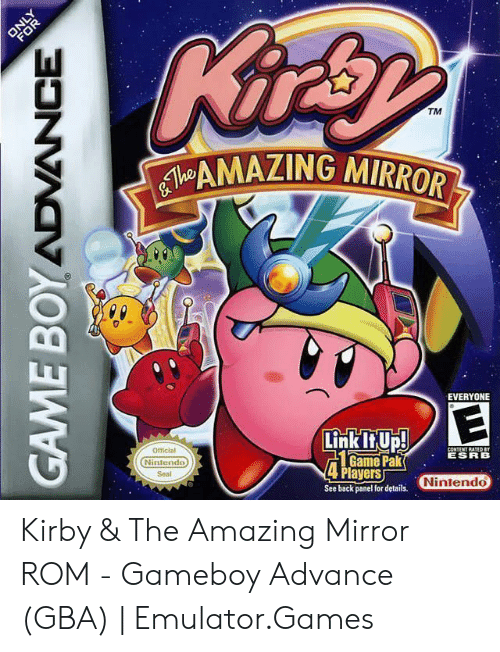 TM MAZING MIRROR EVERYONE Official Game PakESRB Players