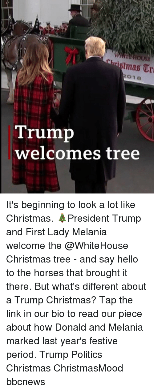 Christmas, Hello, and Horses: tmas Ur  Trump  welcomes tree It's beginning to look a lot like Christmas. 🎄President Trump and First Lady Melania welcome the @WhiteHouse Christmas tree - and say hello to the horses that brought it there. But what's different about a Trump Christmas? Tap the link in our bio to read our piece about how Donald and Melania marked last year's festive period. Trump Politics Christmas ChristmasMood bbcnews