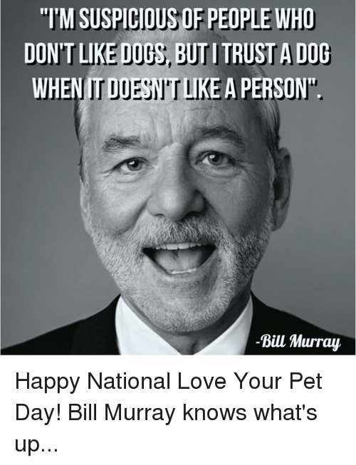 tmsuspiciousof people who dontlikeduthy d whenitd a person bill murray 14839056 ✅ 25 best memes about bill murray bill murray memes,Murray Meme