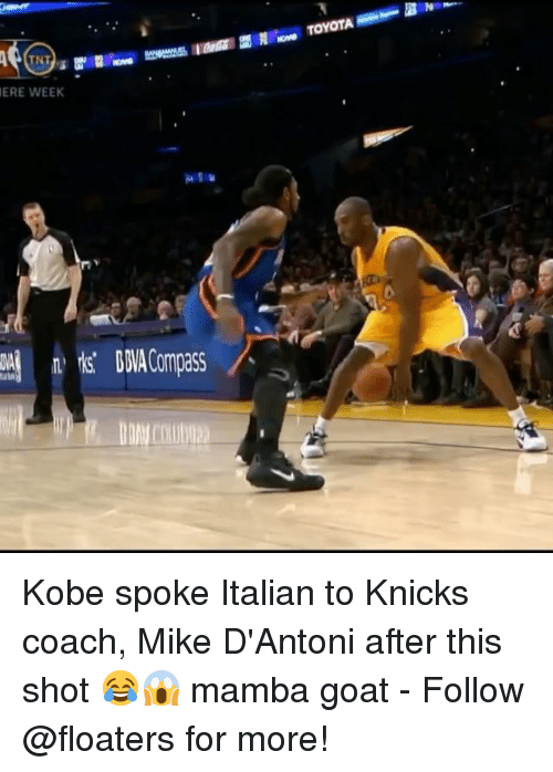 New York Knicks, Memes, and Goat: TNT  ERE WEEK Kobe spoke Italian to Knicks coach, Mike D'Antoni after this shot 😂😱 mamba goat - Follow @floaters for more!
