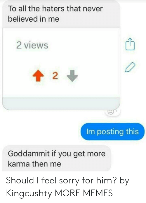 Dank, Memes, and Sorry: To all the haters that never  believed in me  2 views  2  Im posting this  Goddammit if you get more  karma then me Should I feel sorry for him? by Kingcushty MORE MEMES
