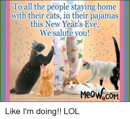 to all the people staying home with their cats in 10255425 to all the people staying home with their cats in their pajamas this