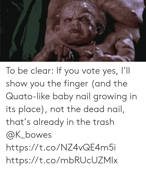 me.me: To be clear: If you vote yes, I'll show you the finger (and the Quato-like baby nail growing in its place), not the dead nail, that's already in the trash @K_bowes https://t.co/NZ4vQE4m5i https://t.co/mbRUcUZMIx