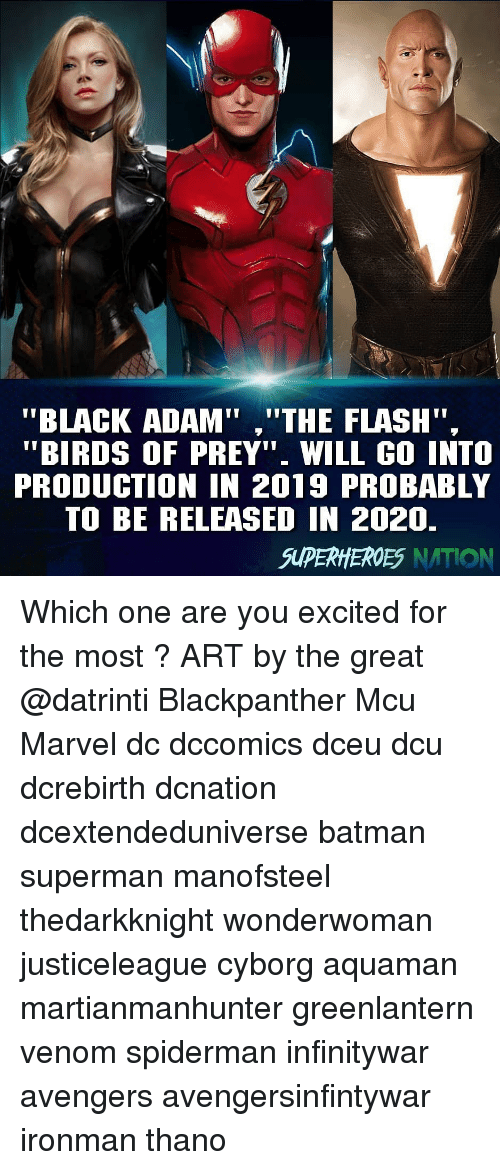 "Batman, Memes, and Superman: to  ""BLACK ADAM"",""THE FLASH"".  ""BIRDS OF PREY"" WILL GO INTO  PRODUCTION IN 2019 PROBABLY  TO BE RELEASED IN 2020.  SUPERHEROES NATION Which one are you excited for the most ? ART by the great @datrinti Blackpanther Mcu Marvel dc dccomics dceu dcu dcrebirth dcnation dcextendeduniverse batman superman manofsteel thedarkknight wonderwoman justiceleague cyborg aquaman martianmanhunter greenlantern venom spiderman infinitywar avengers avengersinfintywar ironman thano"