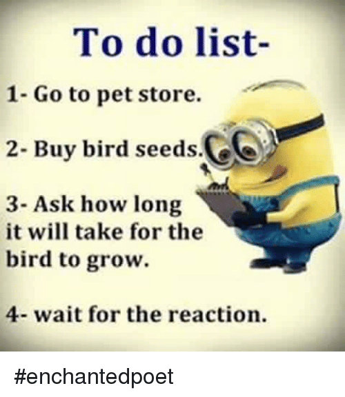 To Do List- 1- Go to Pet Store 2- Buy Bird Seeds 3- Ask How Long It