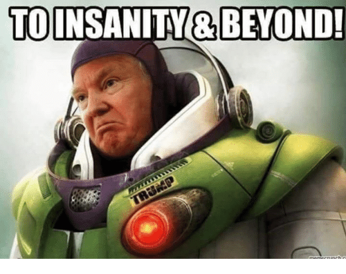 Memes, Insanity, and 🤖: TO  INSANITY& BEYOND