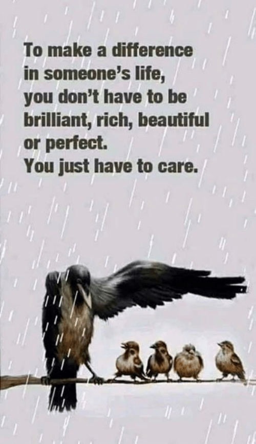 Beautiful, Life, and Memes: To make a difference  in someone's life,  you don't have to be  brilliant, rich, beautiful  or perfeci.  You just have to care.