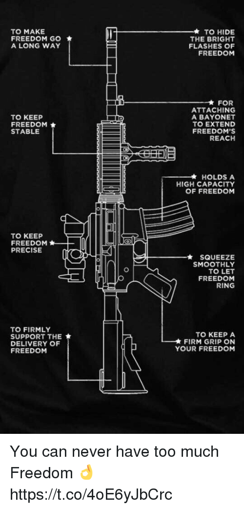 Memes, Too Much, and Freedom: TO MAKE  FREEDOM GO  A LONG WAY  TO HIDE  THE BRIGHT  FLASHES OF  FREEDOM  FOR  TO KEEP  FREEDOM  STABLE  ATTACHING  A BAYONET  TO EXTEND  FREEDOM'S  REACH  * HOLDS A  HIGH CAPACITY  OF FREEDOM  TO KEEP  FREEDOM  PRECISE  - - -★ SQUEEZE  SMOOTHLY  TO LET  FREEDOM  RING  TO FIRMLY  SUPPORT THE  DELIVERY OF  FREEDOM  TO KEEP A  FIRM GRIP ON  YOUR FREEDOM You can never have too much Freedom 👌 https://t.co/4oE6yJbCrc