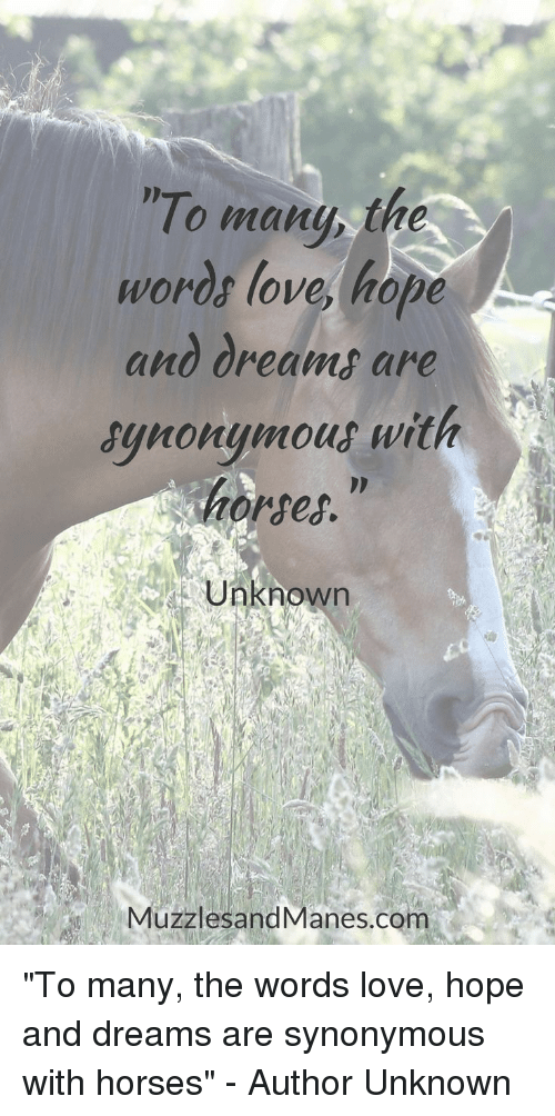 "Horses, Love, and Dreams: To many the  words love, hope  and dreams are  synonymout with  horses.""  Unknown  MuzzlesandManes.com ""To many, the words love, hope and dreams are synonymous with horses"" - Author Unknown"