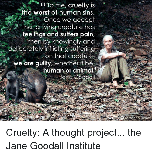 an analysis of pain and suffering of animals for human sake However, in this paper, you will be enlightened on the pain and suffering of animals in three different industries and you will also hear from the other side of this issue first, one of the biggest culprits of animal suffering is the animal food industry.