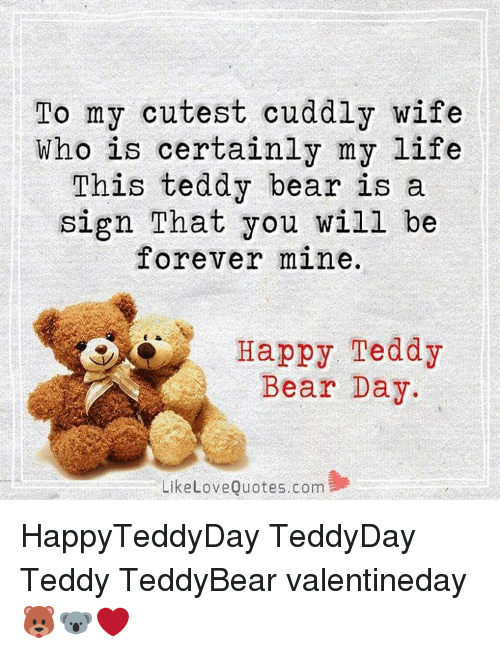 To My Cutest Cuddly Wife Who Is Certainly My Life This Teddy Bear Is