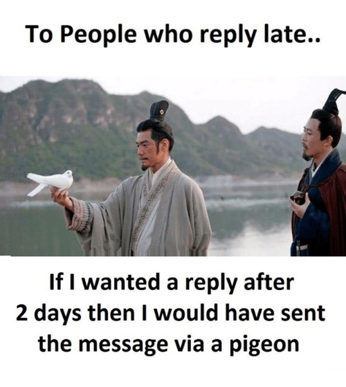 Funny Pigeon Memes Of 2017 On Me Me Sent