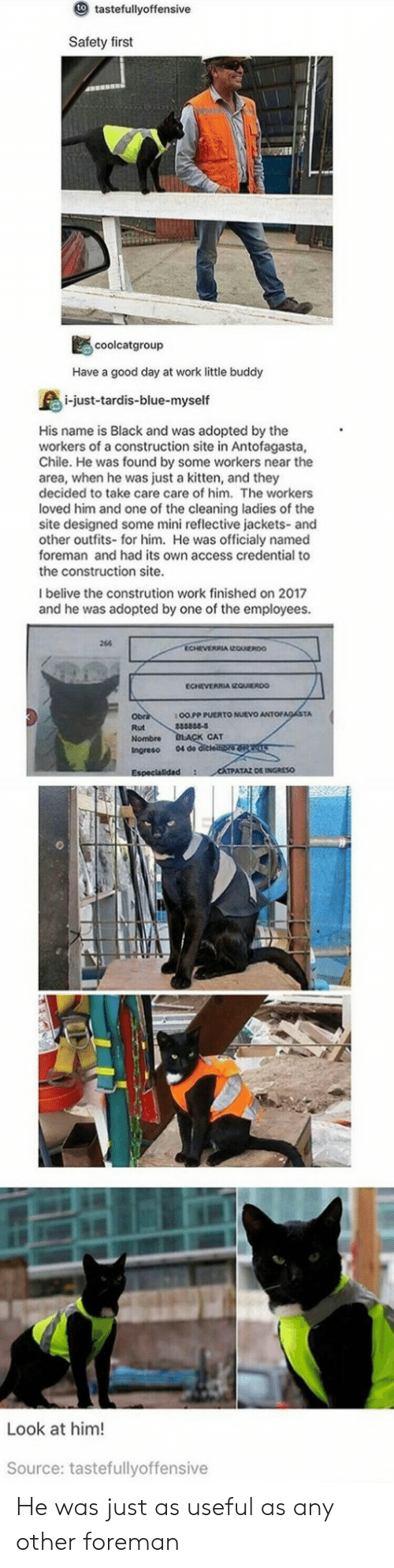 Work, Access, and Black: to  tastefullyoffensive  Safety first  coolcatgroup  Have a good day at work little buddy  i-just-tardis-blue-myself  His name is Black and was adopted by the  workers of a construction site in Antofagasta,  Chile. He was found by some workers near the  area, when he was just a kitten, and they  decided to take care care of him. The workers  loved him and one of the cleaning ladies of the  site designed some mini reflective jackets-and  other outfits- for him. He was officialy named  foreman and had its own access credential to  the construction site.  Ibelive the constrution work finished on 2017  and he was adopted by one of the employees.  264  ECHEVERIA EQUIEROO  1 O0 PP PUERTO NUEVO ANTOFACASTA  Rut  Nombre  Ingreso 04 de  CAT  IPATAZ DE INGRESO  Look at him!  Source: tastefullyoffensive He was just as useful as any other foreman