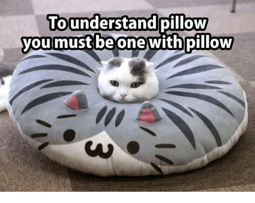 Grumpy Cat, Understanding, and Understandable: To understand  pillow  you must be one with pillow