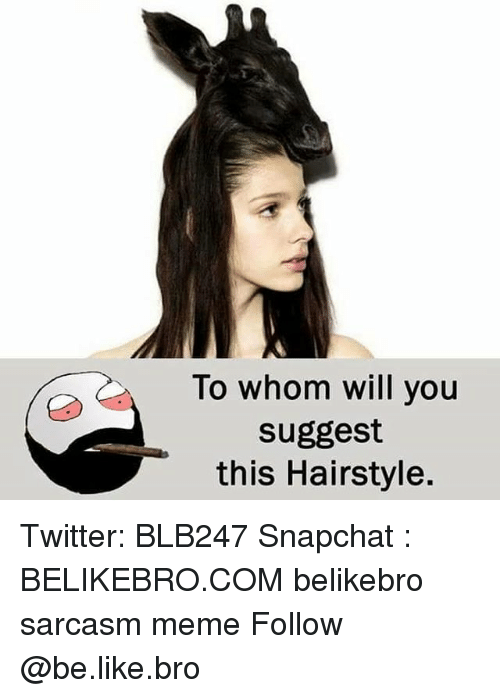 Be Like, Meme, and Memes: To whom will you  suggest  this Hairstyle. Twitter: BLB247 Snapchat : BELIKEBRO.COM belikebro sarcasm meme Follow @be.like.bro