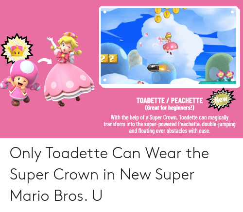 TOADETTE PEACHETTE New Great for Beginners! With the Help of