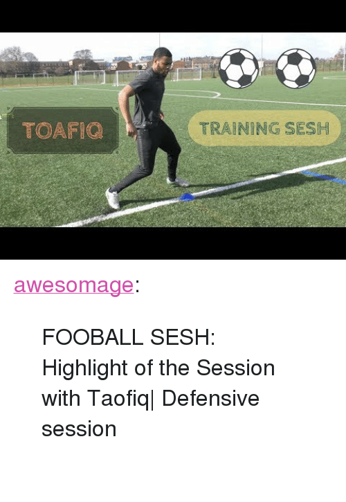 """Tumblr, Blog, and Com: TOAFIC  TRAINING SESH <p><a href=""""https://awesomage.tumblr.com/post/172353075095/fooball-sesh-highlight-of-the-session-with"""" class=""""tumblr_blog"""">awesomage</a>:</p><blockquote><p style="""""""">  FOOBALL SESH: Highlight of the Session with Taofiq