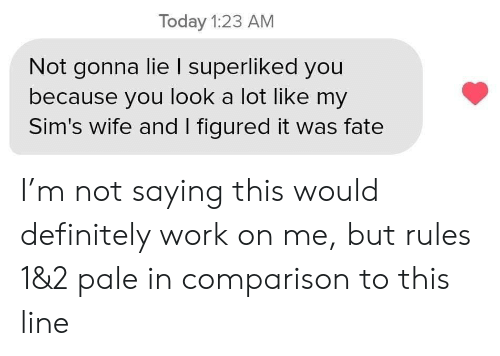 Definitely, Work, and Sims: Today 1:23 AM  Not gonna lie I superliked you  because you look a lot like my  Sim's wife and I figured it was fate I'm not saying this would definitely work on me, but rules 1&2 pale in comparison to this line