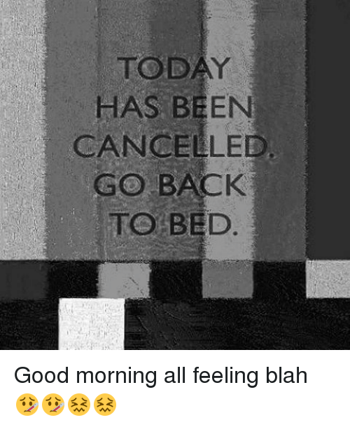 Today Has Been Cancelled Go Back To Bed Good Morning All Feeling