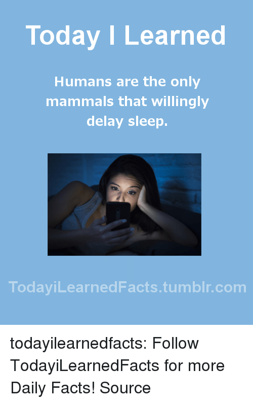 Facts, News, and Tumblr: Today I Learned  Humans are the only  mammals that willingly  delay sleep.  TodaviLearned Facts.tumblr.com todayilearnedfacts: Follow TodayiLearnedFacts for more Daily Facts! Source