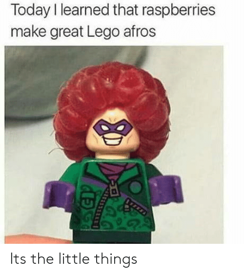 Lego, Today, and Afros: Today I learned that raspberries  make great Lego afros Its the little things