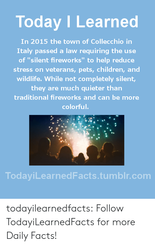 "Children, Facts, and Tumblr: Today ILearned  In 2015 the town of Collecchio in  Italy passed a law requiring the use  of ""silent fireworks"" to help reduce  stress on veterans, pets, children, and  wildlife. While not completely silent,  they are much quieter than  traditional fireworks and can be more  colorful.  TodayiLearnedFacts.tumblr.com todayilearnedfacts:  Follow TodayiLearnedFacts for more Daily Facts!"